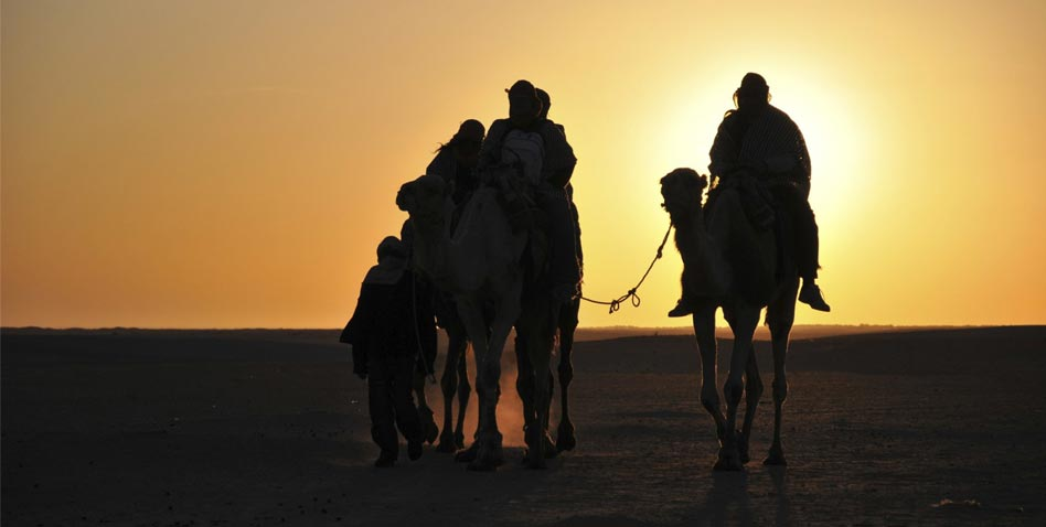 tunisie camel ride